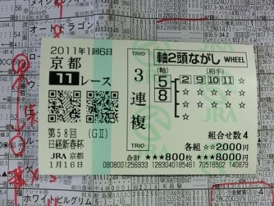 日経新春杯110116