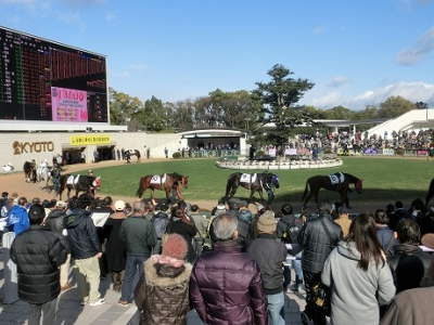 祝日の京都競馬場