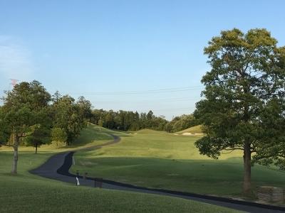 ベアズパウ/Dunlop Golf School(17/6/3)