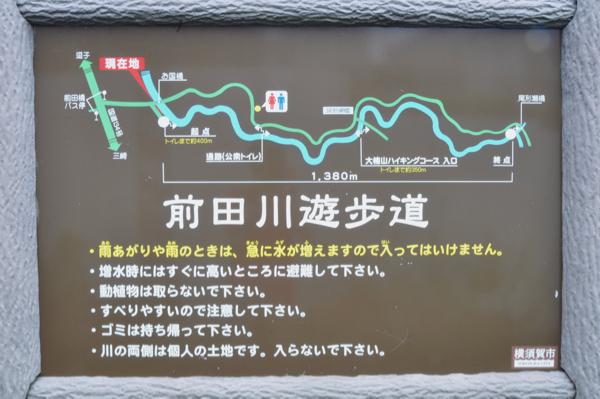 DSC_1227.jpg