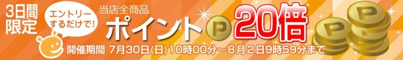 2017_p_up20.jpg