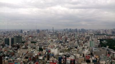 損保ジャパンビル42階より