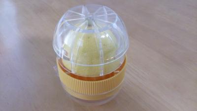 レモンとレモン絞り器