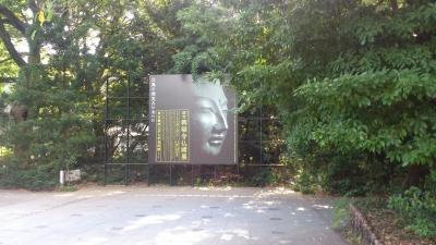 東京芸術大学興福寺仏頭展