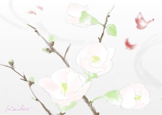 ボケの花の水彩画