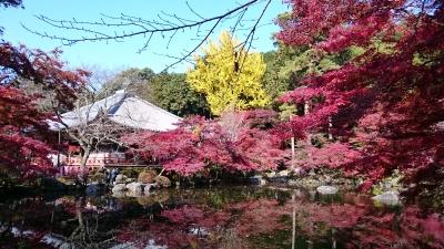 醍醐寺 弁天池紅葉