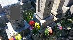 和歌山 墓