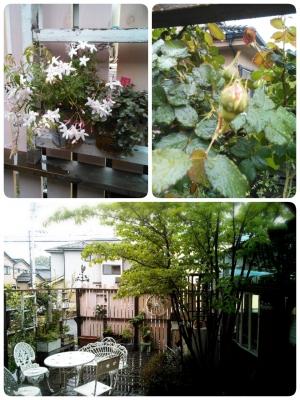 LINEcamera_share_2014-04-30-07-32-02.jpg