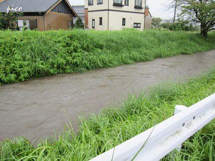 今にも氾濫しそうな川・・・。
