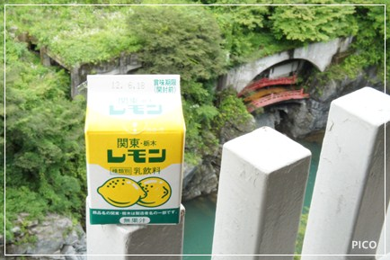 関東・栃木 レモン