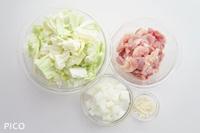 鶏肉・キャベツ・玉ねぎは食べやすい大きさに切る。にんにくはみじん切りにする。