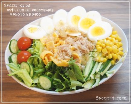 野菜たっぷりのスペシャルサラダ