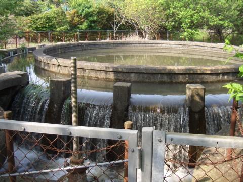 東金円筒分水 越流