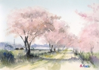 桜の水彩スケッチ Cherry blossom Watercolor sketch by Satoshi Kudo