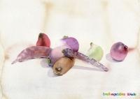 小さな野菜/水彩画 small vegetable / watercolor