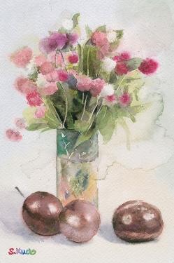 globe-amaranth 千日紅 Watercolor 水彩