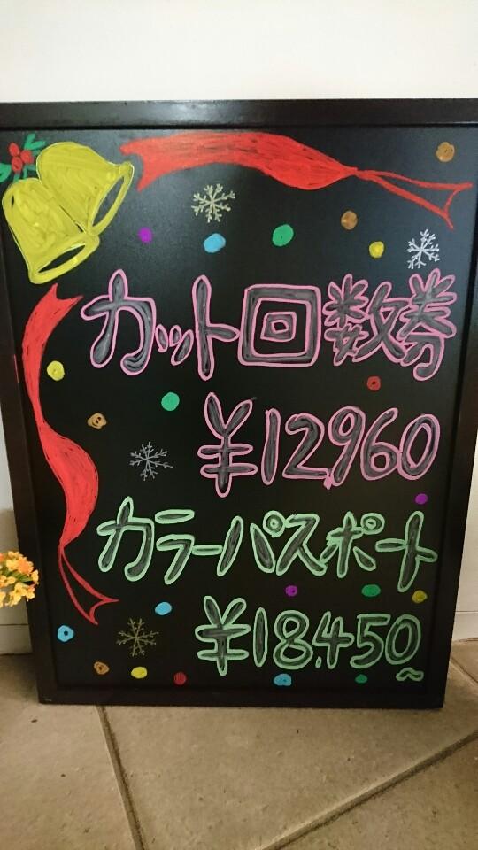 DSC_0316-540x960.JPG