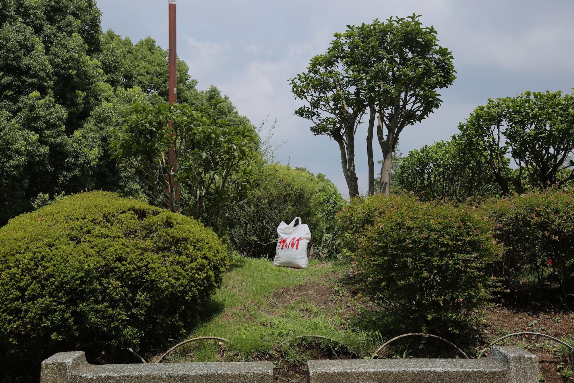 6.Takuya Ikezaki1-1.JPG