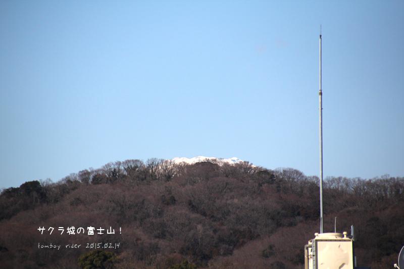 sakufu1.jpg