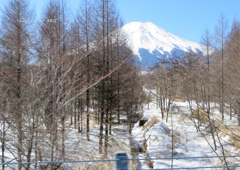sakufu20.jpg