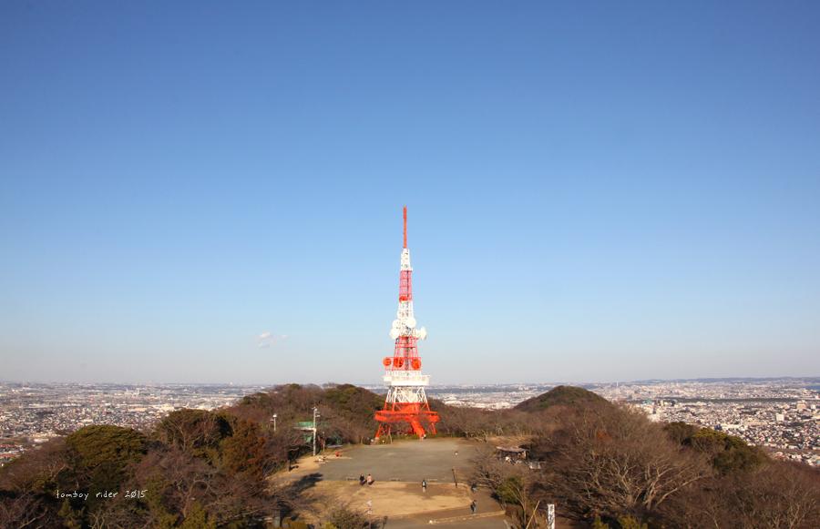 sakufu40.jpg