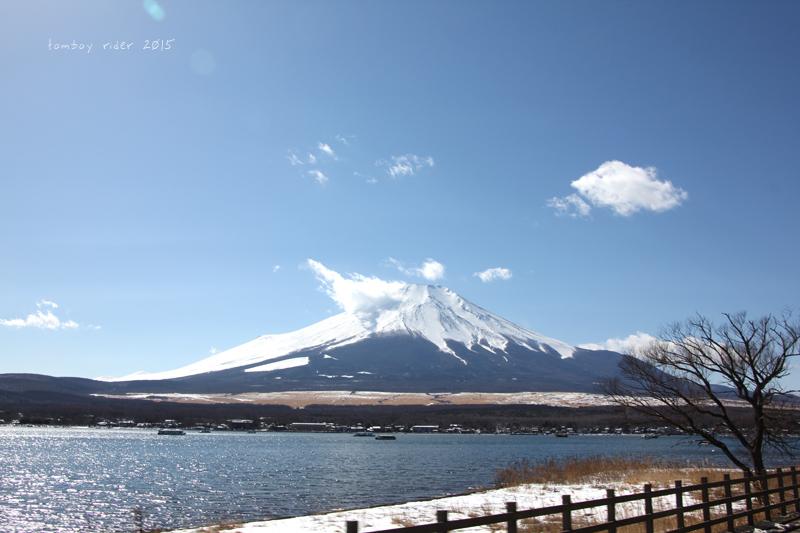 sakufu44.jpg