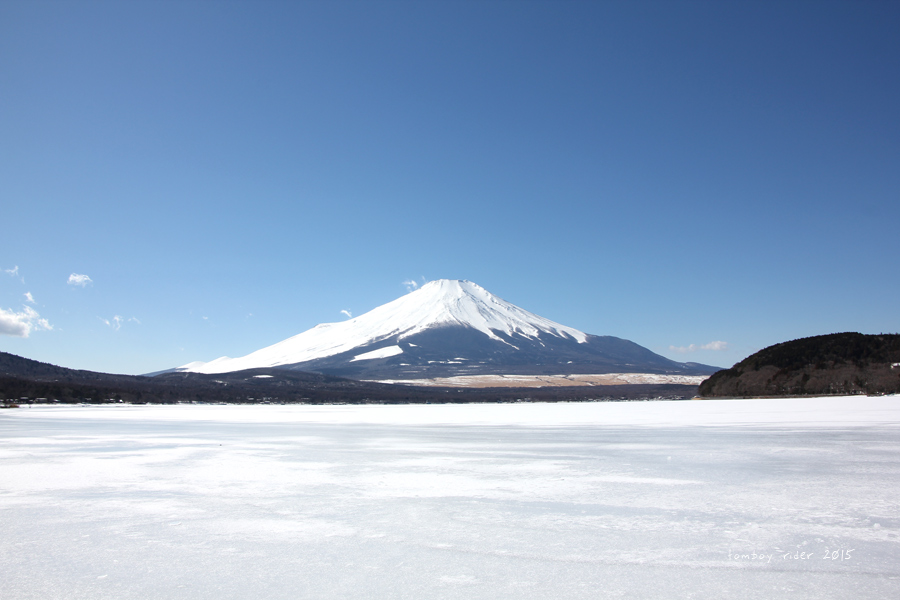 sakufu54.jpg