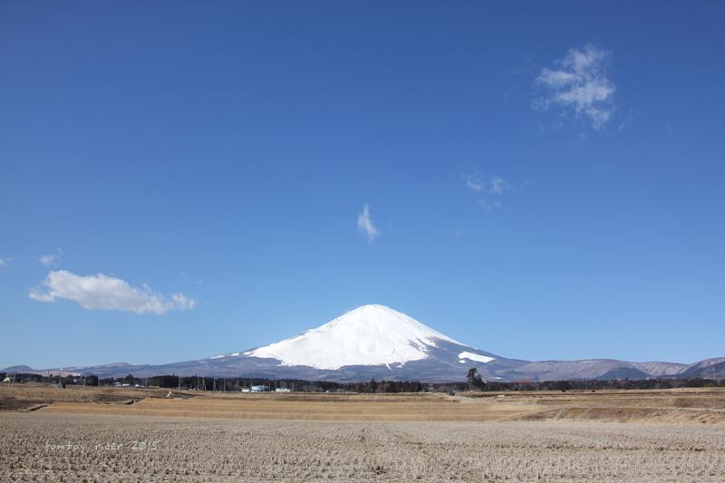 sakufu59.jpg