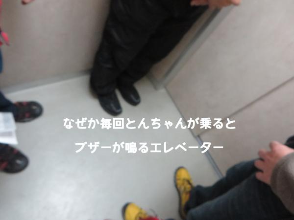kurumi5.jpg