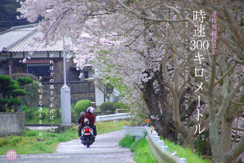 2015sakura18.jpg