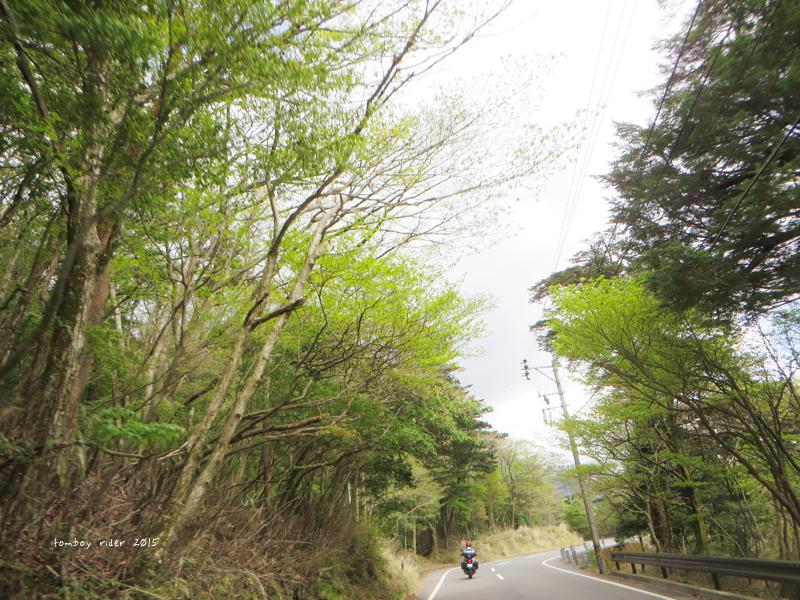 kyusyutour104.jpg