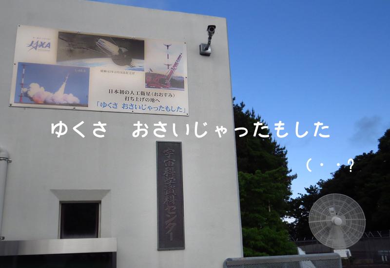 uchi58.jpg