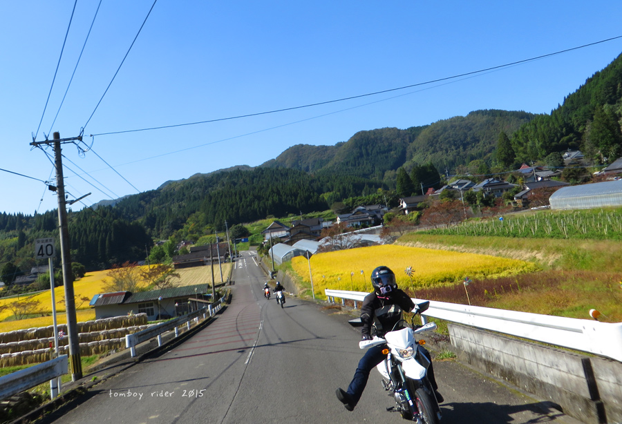 gooto8.jpg