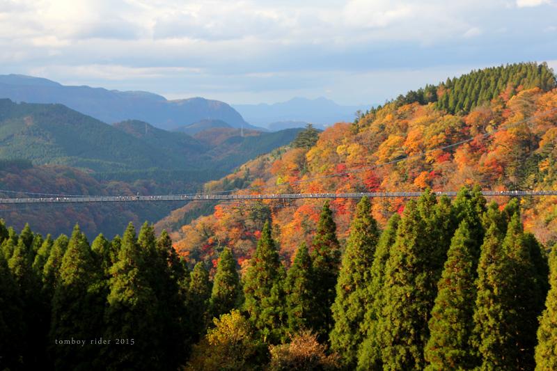 cyojabaru33.jpg