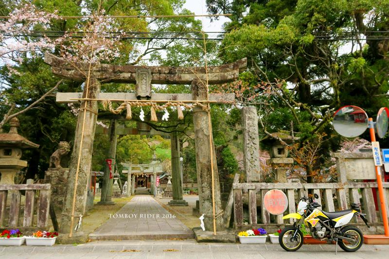 chikuiwa4.jpg