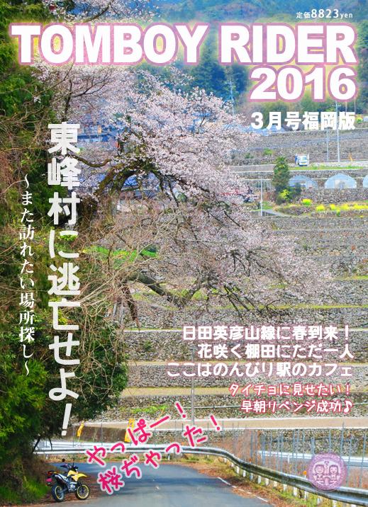 chikuiwa6.jpg