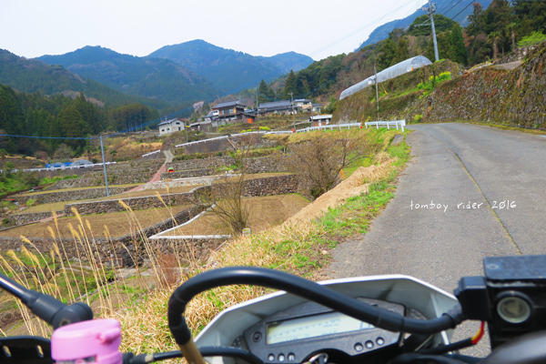 chikuiwa9.jpg