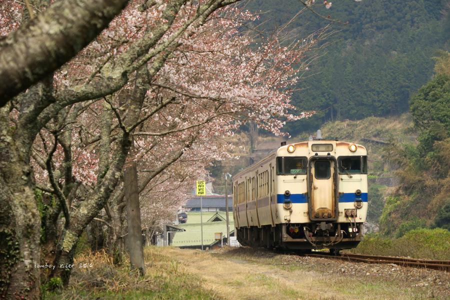 chikuiwa15.jpg