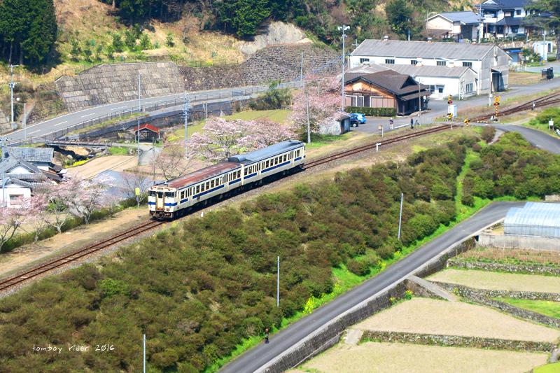 chikuiwa20.jpg