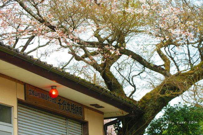 chikuiwa26.jpg