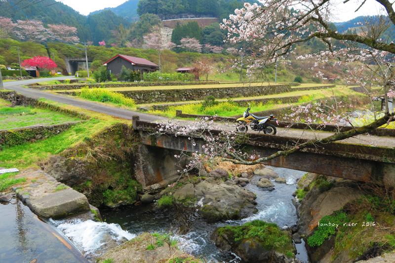 chikuiwa28.jpg