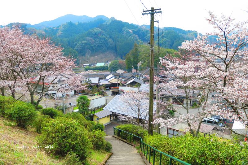 chikuiwa39.jpg