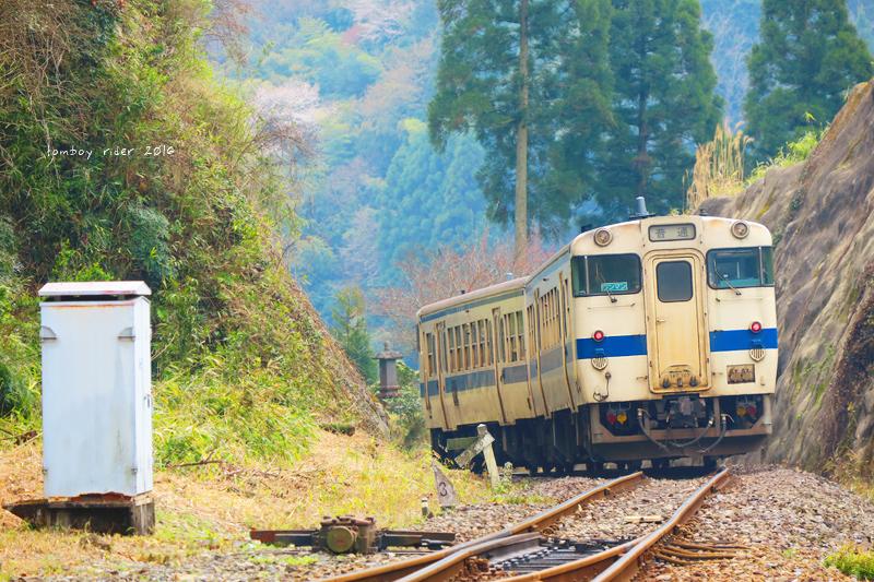 chikuiwa40.jpg