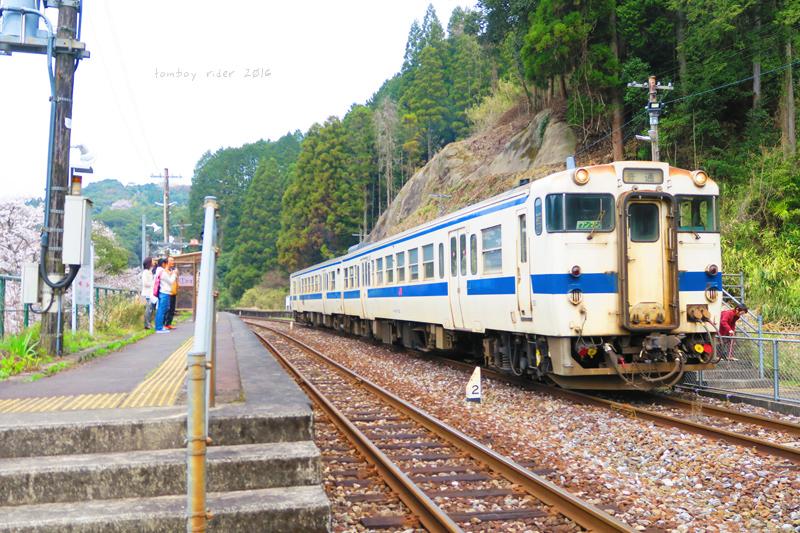 chikuiwa42.jpg