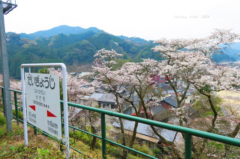 chikuiwa45.jpg