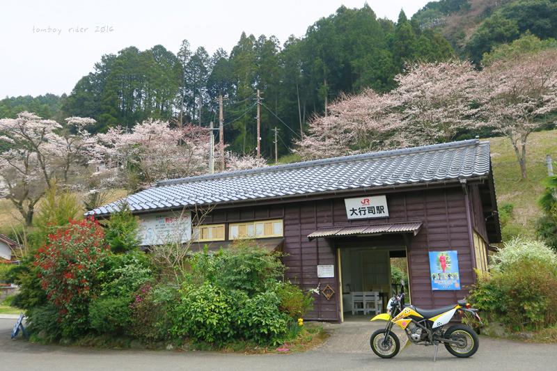 chikuiwa50.jpg