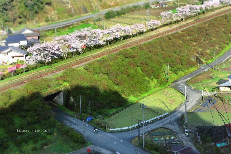 chikuiwa66.jpg