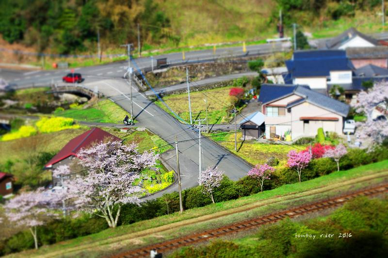 chikuiwa67.jpg