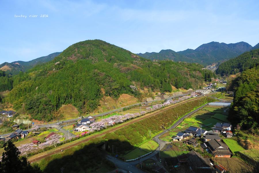 chikuiwa70.jpg