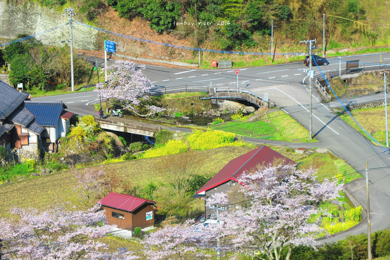 chikuiwa72.jpg